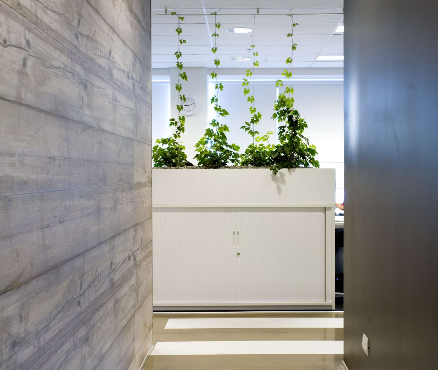 White commercial office interior storage